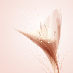 Vector background with delicate flowers