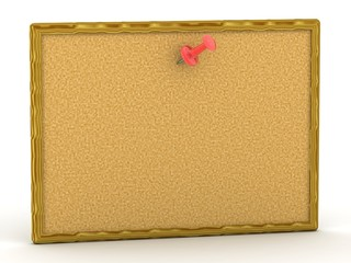 3D cork board with one red pin