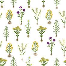 Zielnik kwiaty z korzeni, bez szwu wzór