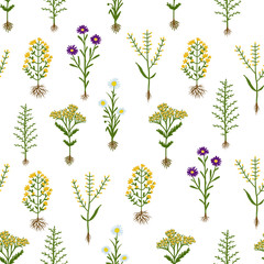 Herbarium flowers with roots, seamless pattern