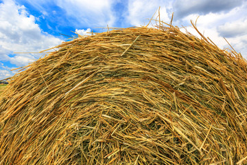 hay stack close-up on sky background