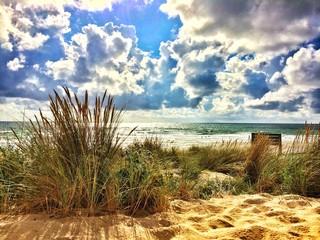 dune de lacanau océan