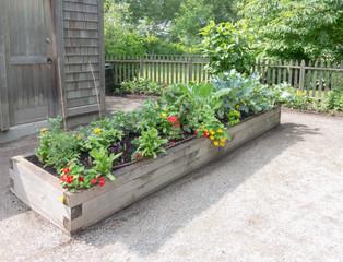 Raised bed in Community Garden