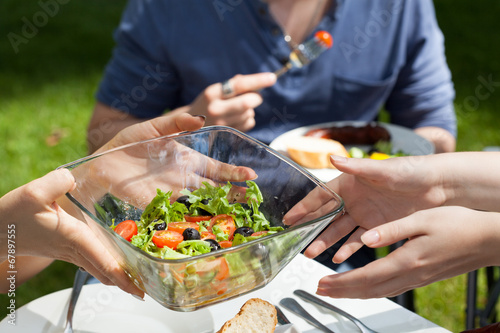 canvas print picture Salad on garden party