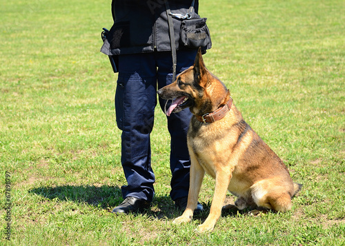 Keuken foto achterwand Wolf K9 police officer with his dog
