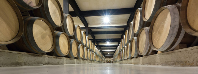 wooden barrels in  wine factory
