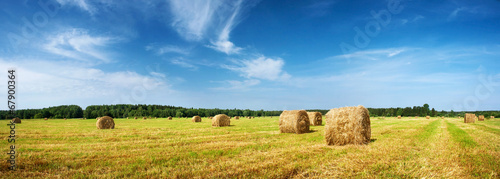 Hay bales with blue sky - 67900364