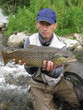 Fishing - brown trout