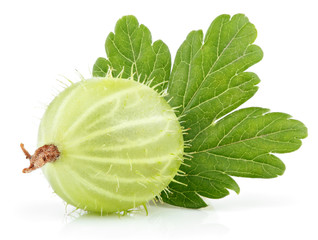 Closeup of green gooseberry with leaf isolated on white