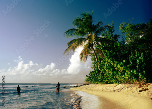 canvas print picture Strand auf der Karibikinsel Guadeloupe