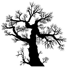 Alter, knorriger Baum – Vektor, schwarz, freigestellt