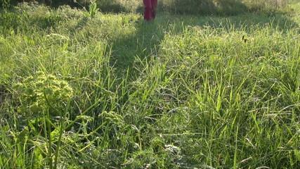 farmer walking on dewy summer morning meadow grass