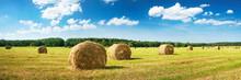 """Постер, картина, фотообои """"Hay bales with blue sky and fluffy clouds"""""""