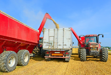Overloading grain silo with a tractor in a car