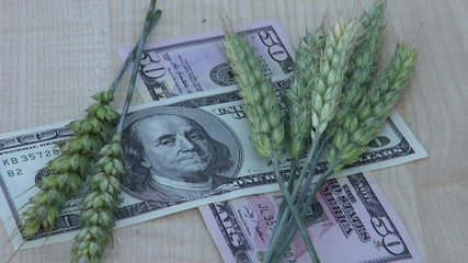 agriculture business concept – rotate wheat ears and dollars