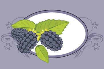 Frame with blackberry. Label for design