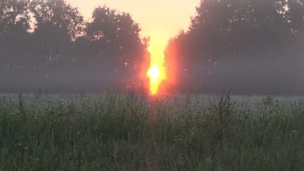 beautiful summer time sunrise