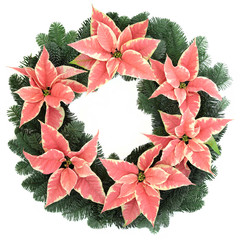 Pink Poinsettia Wreath