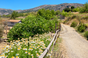 Countryside. Crete island, Greece
