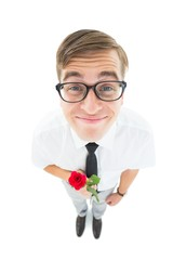 Geeky hipster holding a red rose