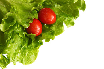 tomatoes in lettuce leaves