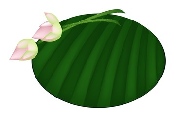 Pink Lotus Flower on Green Banana Leaf