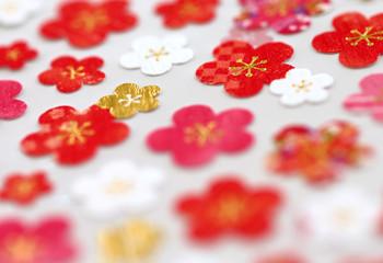 花柄 カラフルな梅の花
