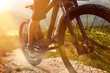 canvas print picture - Mountain Bike