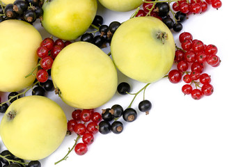 apples with red and black currant the isolated