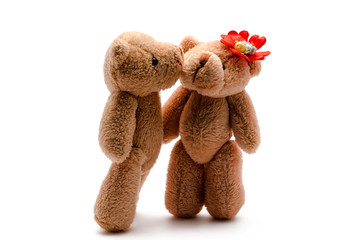 two toy bears the isolated