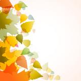 Fototapety Vector autumn background
