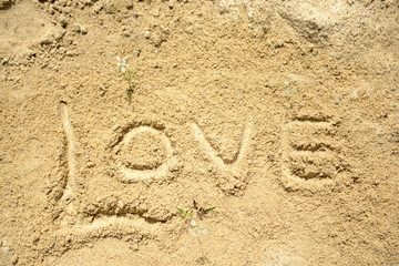Word love written in the sand
