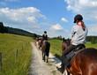 Mädchen, Ausritt, Pferde - 67927936