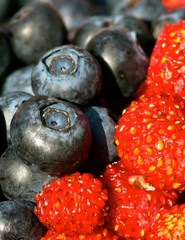 Fresh blueberry and wild strawberry in summer.