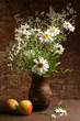 Daisies in vase and apples