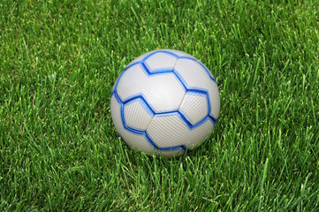 Soccer Ball on the Green Grass