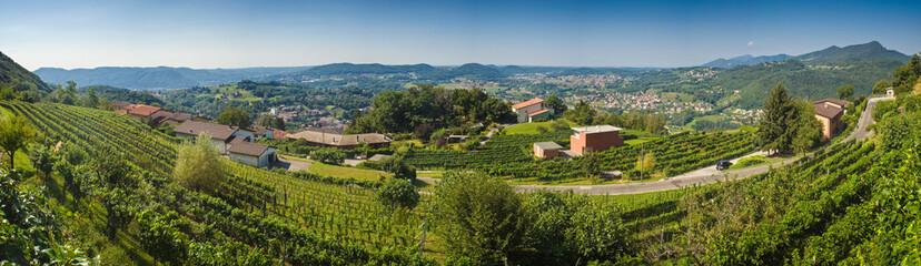 Vineyards, villas and vistas