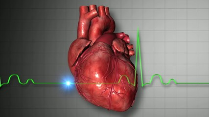 心臓が鼓動するイメージ