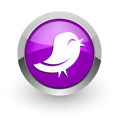 twitter pink glossy web icon