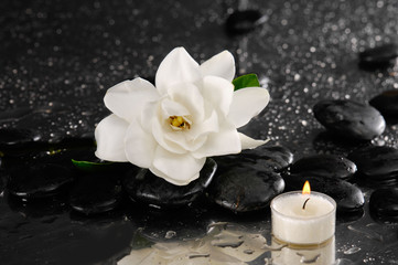 gardenia and candle on pebbles –wet background
