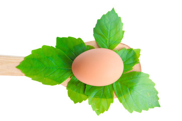 Fresh Egg and leaves on ladle wood.