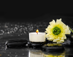 still life with ranunculus and candle on black stones