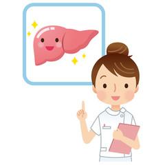 医療 健康 肝臓