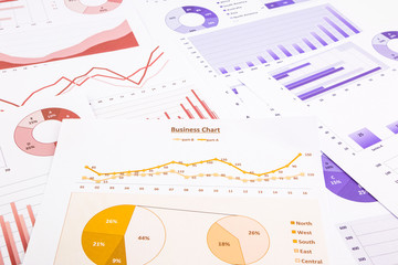 business charts, data analysis, marketing report and educational