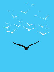 Birds flying as a leadership concept