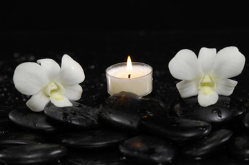 Two white orchid with white candle and therapy stones