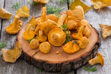 fresh chanterelle mushrooms on a wooden background, top view