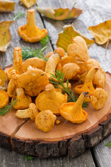 fresh chanterelle mushrooms on a wooden background, vertical