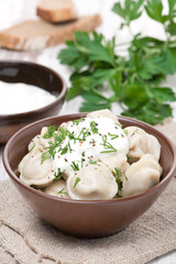 traditional Russian dumplings with sour cream and dill, vertical