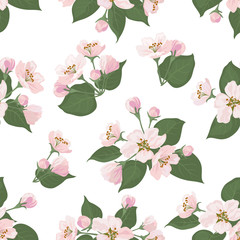 Seamless floral pattern, apple tree flowers